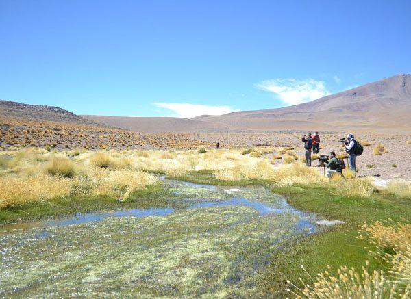 El gobernador Juan Carlos Cejas anunció que gobernadores de otros departamentos del país visitarán la región del Silala con la finalidad de generar conciencia nacional respecto a un recurso natural que es saqueado por los chilenos.
