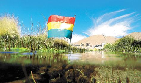 Vertientes. Los bofedales formados producto de los manantiales del Silala en la localidad de Quetena, en Potosí.