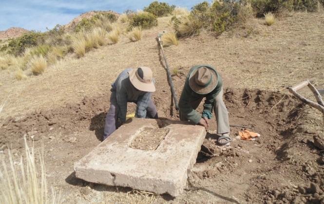 El cambio climático ha provocado la caída de la producción de forraje y papa en el altiplano