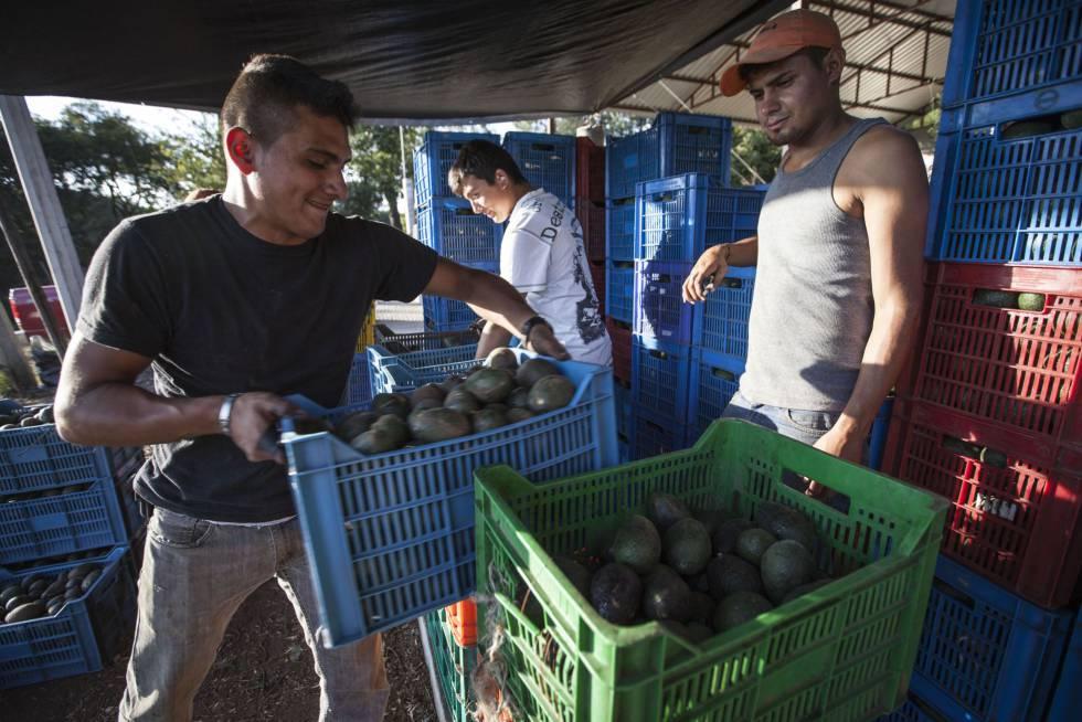 La subida de la gasolina y la luz amenaza con un repunte de la inflación en México