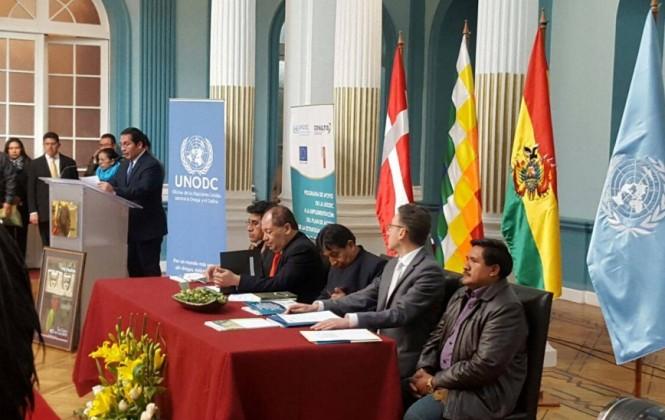 En 2015, Bolivia eliminó más de 11 mil ha de coca, pero su reducción neta fue de 200 hectáreas