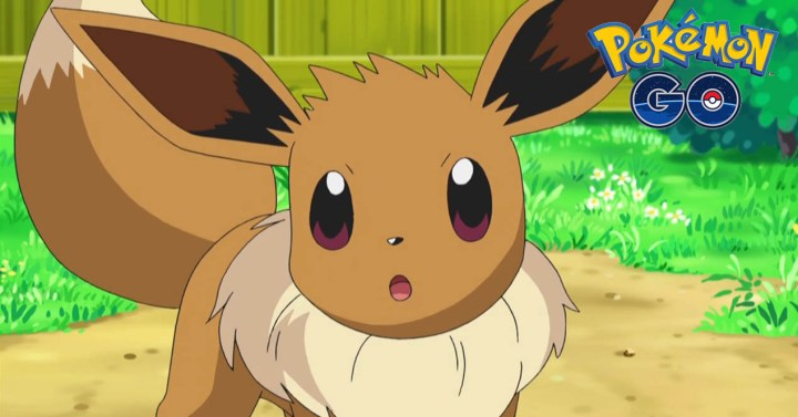 Pokémon GO eevee