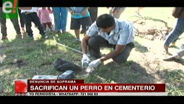 Soprama denuncia que son frecuentes los sacrificios de animales