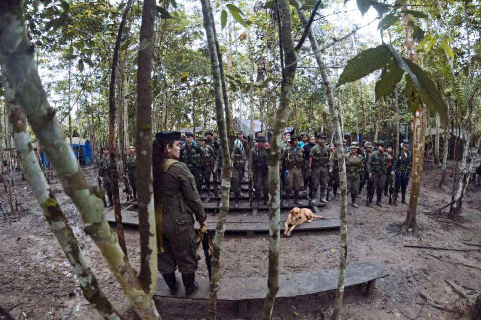 Un momento de la formación de los guerrilleros.