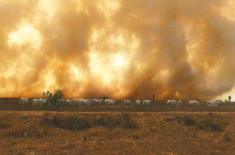 Alerta. Los incendios en Beni y Pando ponen en riesgo la salud. Foto: APG
