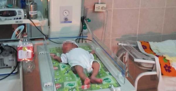 La criatura recibió atención en un hospital de la capital montereña
