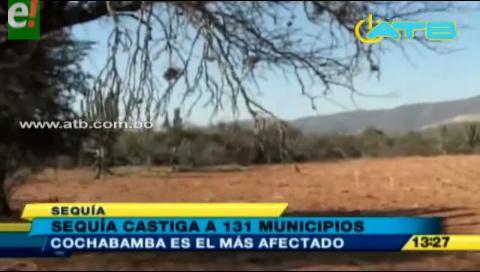 La sequía afecta a 131 municipios en todo el país
