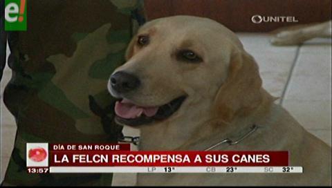 En San Roque la Felcn premia a sus canes