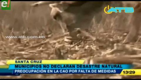 Alcaldías no declaran zona de desastre natural a municipios afectados por la sequía