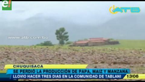 Lluvias y granizos dañan producción agrícola en Chuquisaca