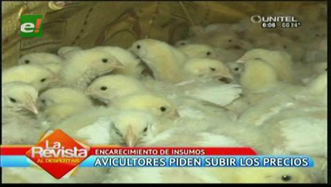 Avicultores garantizan el pollo pero piden incremento de precio por insumos