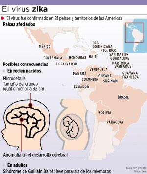 Reportan el primer nacido con microcefalia por zika en Sucre