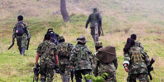 Resultado de imagen para Mueren en combate dos guerrilleros de las FARC en Colombia