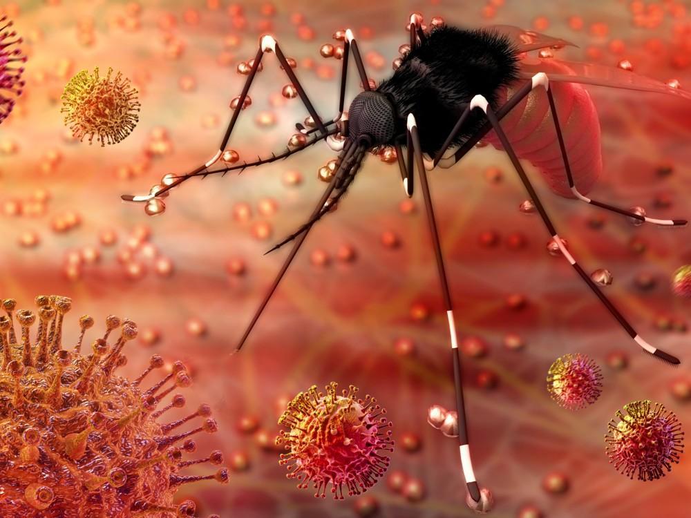 Expansión del virus Zika