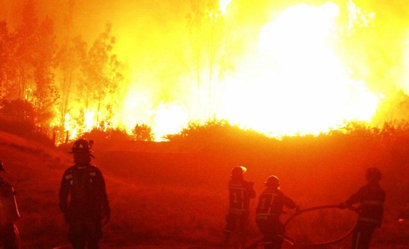 Incendios forestales: Abbott y Dolmetsch coinciden en que no hay antecedentes para hablar de actos terroristas