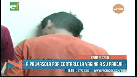 Envían a Palmasola a sujetó que le cortó la vagina a su pareja