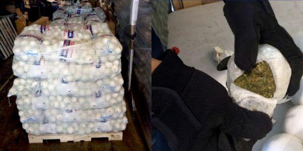 Un cargamento de cebollas con droga en su interior