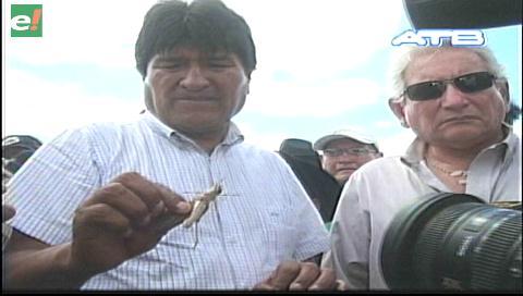 Video titulares de noticias de TV – Bolivia, noche del viernes 10 de febrero de 2017
