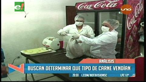 Santa Cruz: Dos laboratorios analizan carne de dudosa procedencia