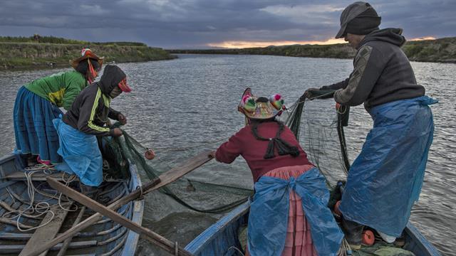 La familia Avila pesca en el río Costa, que desemboca en el Lago Titicaca, en la región de Puno, Perú