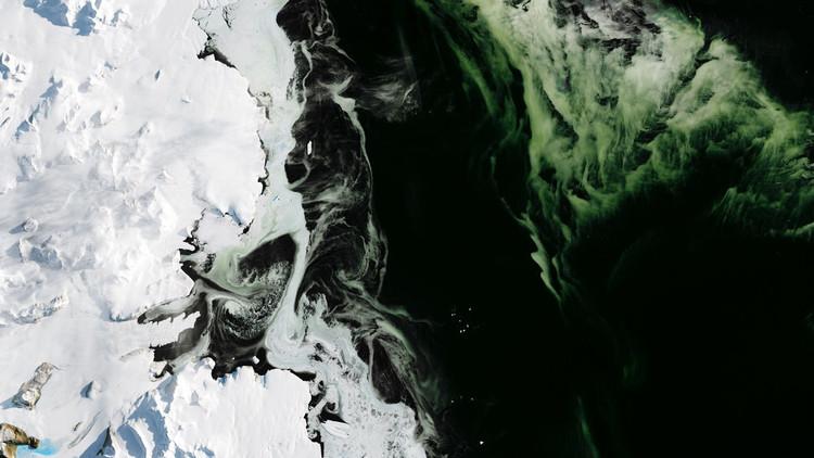 Resuelven el misterio del hielo verde hallado en la Antártida