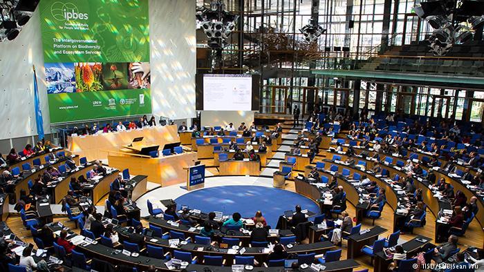 Bonn Intergovernmental Science-Policy Platform on Biodiversity and Ecosystem Services ( IISD/ENB|Sean Wu )