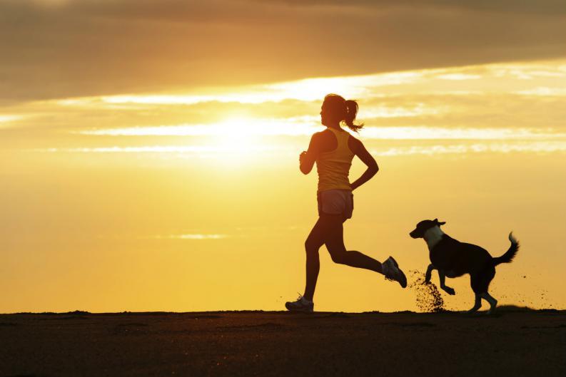 6 beneficios de hacer ejercicio con tu mascota 2