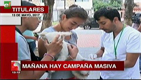 Video titulares de noticias de TV – Bolivia, mediodía del sábado 13 de mayo de 2017