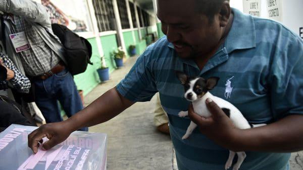 Un hombre acudió a votar acompañado de su perro (AFP)