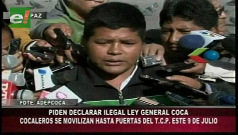 Adepcoca anuncia caravana hacia Sucre para exigir pronunciamiento del TCP sobre Ley de Coca