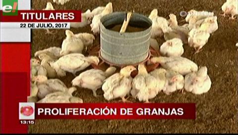Video titulares de noticias de TV – Bolivia, mediodía del sábado 22 de julio de 2017