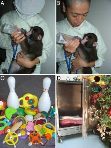 Imágenes de las condiciones de un experimento similar de hace una década.