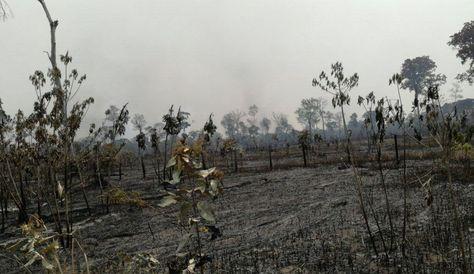 Imágen de las áreas afectadas por los focos de calor en Beni. Foto: Twitter @mindefbolivia