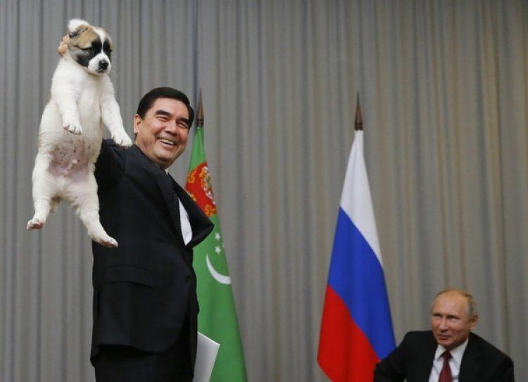 El presidente de Turkmenistán le presenta a Vladimir Putin el pequeño cachorro durante una reunión en Sochi (Maxim Shemetov, Pool Photo via AP)