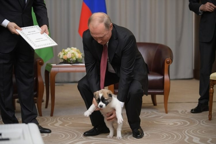 Putinsosteniendo el cachorro (Alexei Druzhinin/Sputnik, Kremlin Pool Photo via AP)