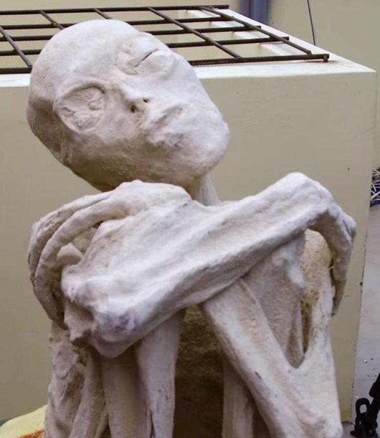 Para Vivanco los detalles del cráneo son muy difíciles de falsificar