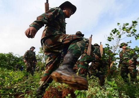 Efectivos de la Policía boliviana durante un operativo de erradicación de cultivos de coca. Foto: Archivo APG