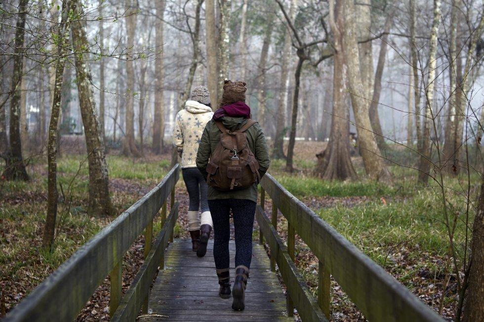 """Varios estudios sugieren que  caminar durante al menos 30 minutos, incluso a un ritmo moderado o pausado, puede tener beneficios para el cerebro  y el cuerpo, así como en  personas con depresión severa  puede contribuir a una reducción clínicamente relevante y estadísticamente significativa de la misma.  """"Es una actividad que  mejora el sistema cardiovascular , puede ayudar a fortalecer el tren inferior en personas mayores y gente con bajo nivel de condición física"""", asegura Ángel Merchán. """"Disminuye los niveles de colesterol, es esencial para diabéticos, refuerza el sistema inmunológico, mejora la circulación y oxigena el cuerpo"""", dice   la entrenadora personal Marta Rosado , aunque """"yo no lo considero un entrenamiento""""."""