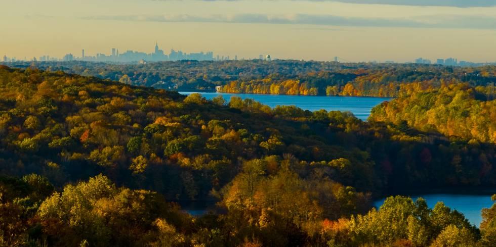 La ciudad de Nueva York vista desde la estación biológica de la Universidad de Fordham.
