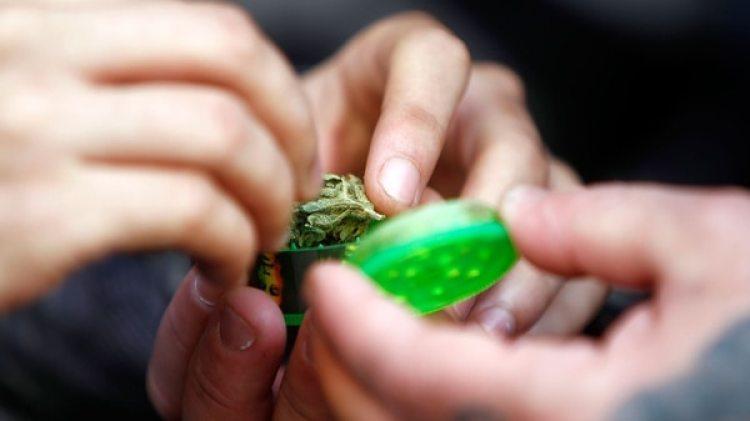 El uso medicinal de la marihuana está aprobado en algunos países (EFE)