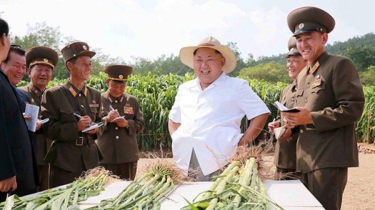 Kim Jong-un brinda instrucciones a sus asesores militares en una granja nrocoreana