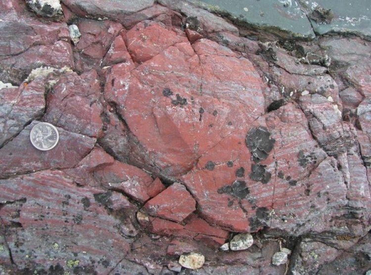 Concreción de esquisto y hematita, con microfósiles y una capa de color rojo brillante. La roca volcánica de color verde oscuro, arriba a la derecha, está formada por precipitaciones de una fuente hidrotermal sobre el lecho marino. Cinturón rocoso de Nuvvuagittuq. Imagen: Dominic Papineau