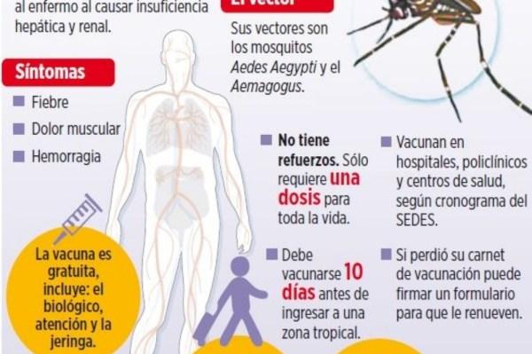 Cambio climático e inmunización causaron cinco epidemias