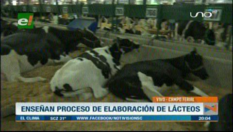 Impulsarán el consumo de lácteos en la Expocruz 2018