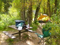 The nice walk-in campsites in the town park.