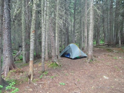 Little tent in the big woods