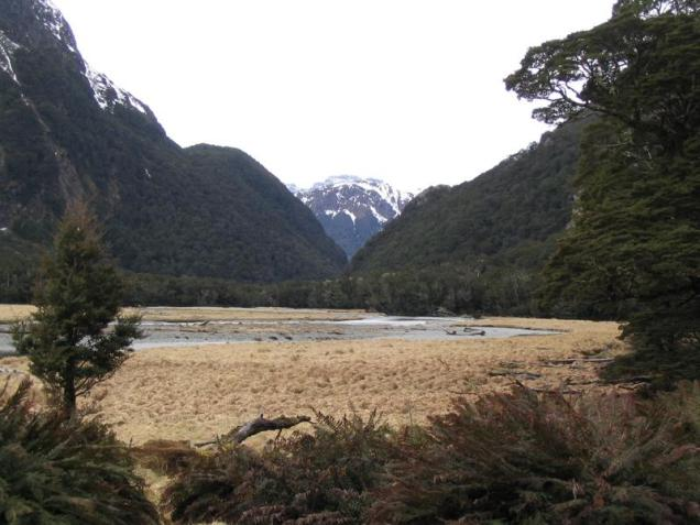 The incredible Routeburn Flats 6km along the famous Routeburn Track.