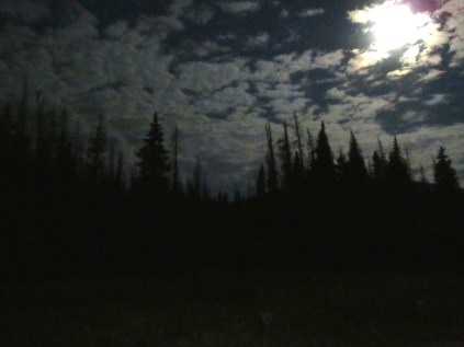 Cold, moonlit bivy at the trailhead.