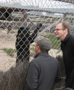 Con and Jeff playing with a black leopard.