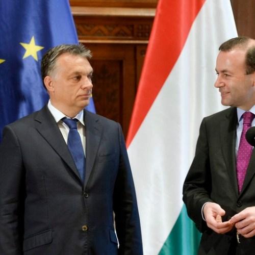 Weber to meet Orbán in Budapest amid EPP row